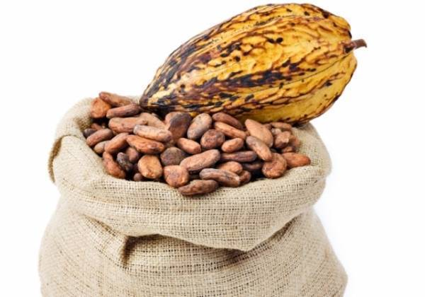 Flavanols present in natural cocoa helps memory on aged adults